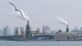 AB mahkemesi, Almanya'nın hava kirliliğiyle yeterince mücadele etmediğine karar verdi