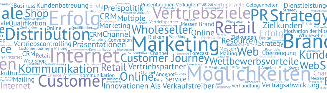 Sales und Marketing Professional