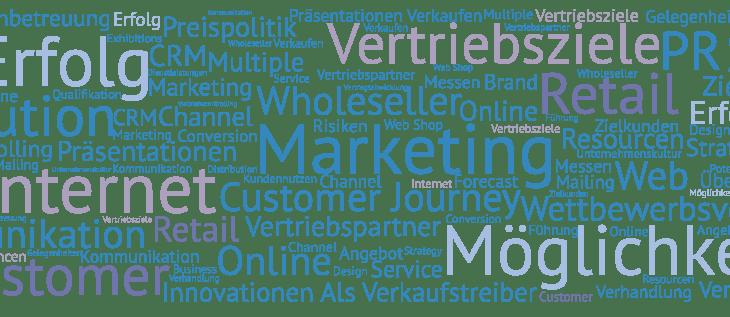 Sales und Marketing Professional