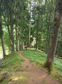 So schön ist´s daheim - Wir gehen wandern mit Rheinfels Quelle