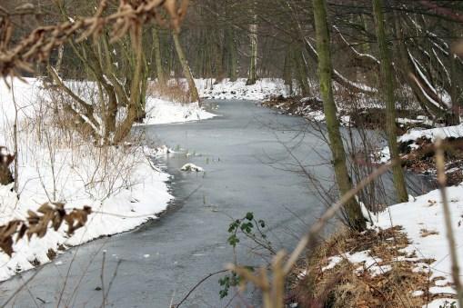 Bramfelder Winterlaufserie_17.03.2013 006