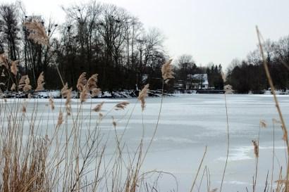 Bramfelder Winterlaufserie_17.03.2013 010