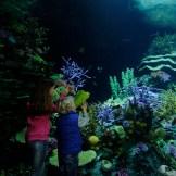 koraaltunnel en kinderen