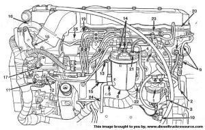 Where is my oil pressure sender?  Dodge Diesel  Diesel Truck Resource Forums