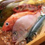 10 Tips for Enjoying Winter Seafood
