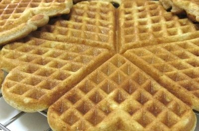 Low Carb Cinnamon Buttermilk Soy Waffles (Atkins Diet Phase 1 Recipe)
