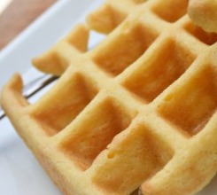 Vanilla Soy Waffles (Atkins Diet Phase 2 Recipe)