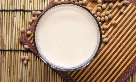 Homemade Sugar-Free Soybean Milk Recipe