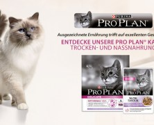 3.000 Tester für Katzenfutter gesucht!