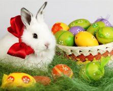 Osterkalender, Ostergewinnspiele & Osteraktionen