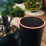Amazon Alexa Echo macht aktuell Probleme