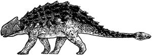 Ankylosaurus unisex