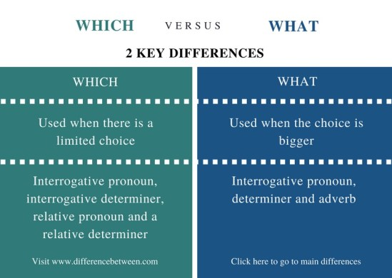 Difference Between Which and What - Comparison Summary