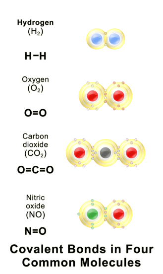 Difference Between Element and Molecule