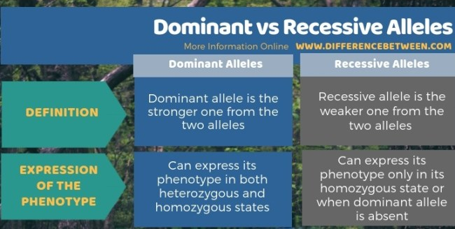 Difference Between Dominant and Recessive Alleles in Tabular Form