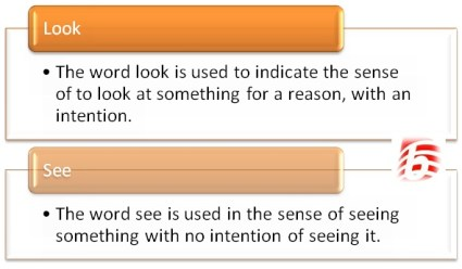 Difference Between Look and SeeDifference Between Look and See
