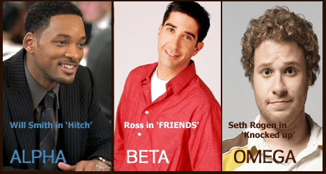Difference Between Alpha Male and Beta Male