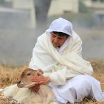 Difference Between Pity and Compassion