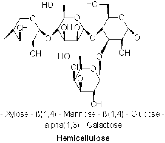 Key Difference - Cellulose vs Hemicellulose