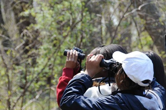 Difference Between Ecotourism and Nature Tourism