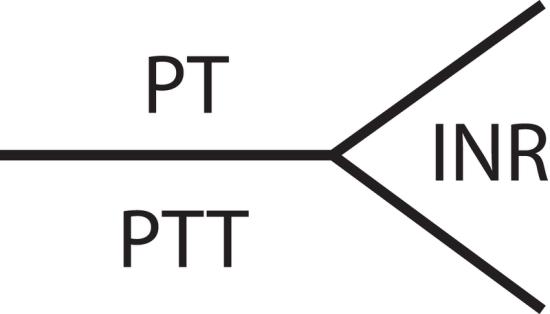 Key Difference - PT vs PTT