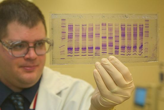 Difference Between DNA and Paternity Testing