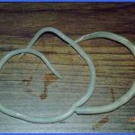 Difference Between Roundworm and Hookworm