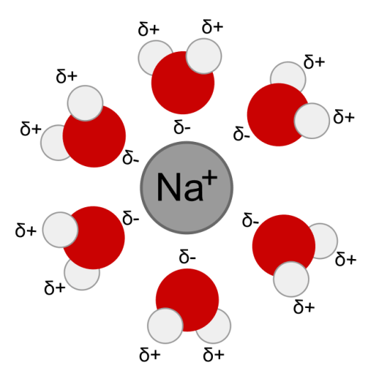 Difference Between Solvation Energy and Lattice Energy