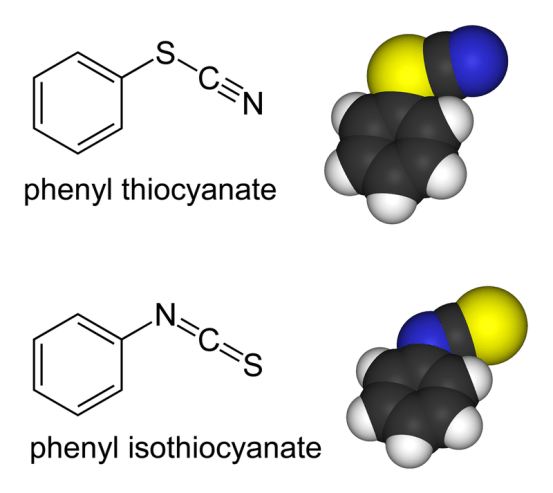 Key Difference Between Bidentate and Ambidentate Ligands