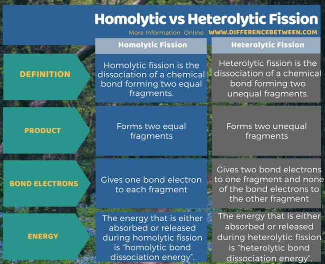 Difference Between Homolytic and Heterolytic Fission in Tabular Form