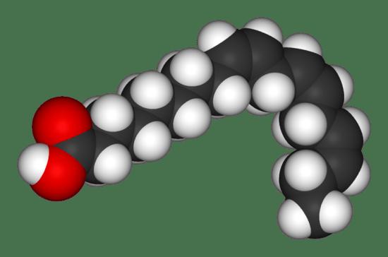 Difference Between Alpha Lipoic Acid and Alpha Linolenic Acid_Figure 01