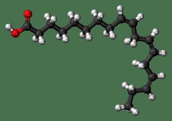Key Difference - Alpha Lipoic Acid vs Alpha Linolenic Acid