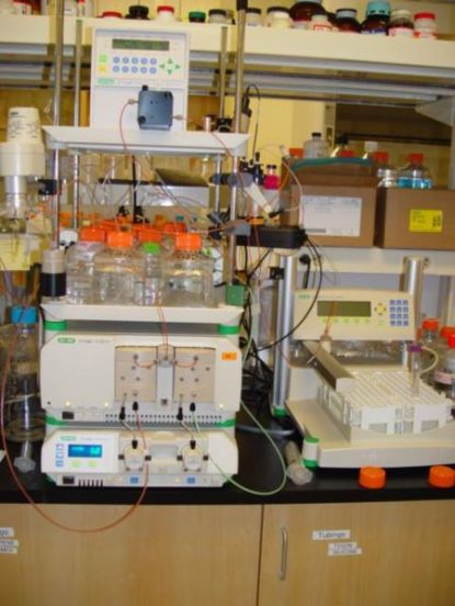 Difference Between Gel Filtration and Gel Permeation Chromatography