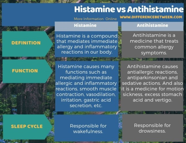 Difference Between Histamine and Antihistamine in Tabular Form