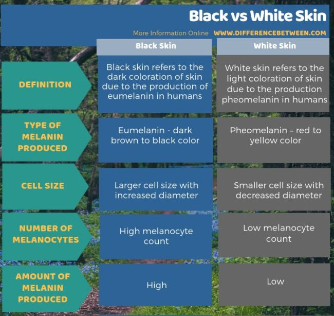 Difference Between Black and White Skin in Tabular Form