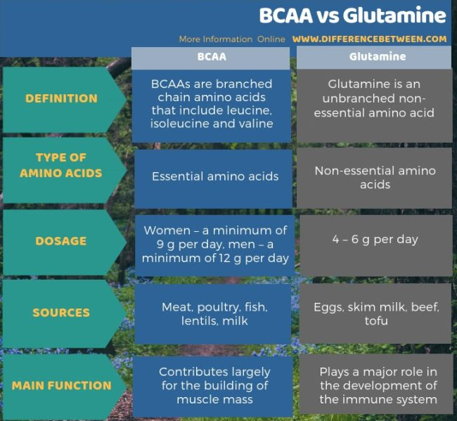 Difference Between BCAA and Glutamine in Tabular Form