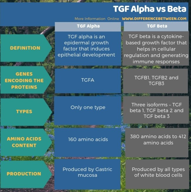 Difference Between TGF Alpha and Beta in Tabular Form