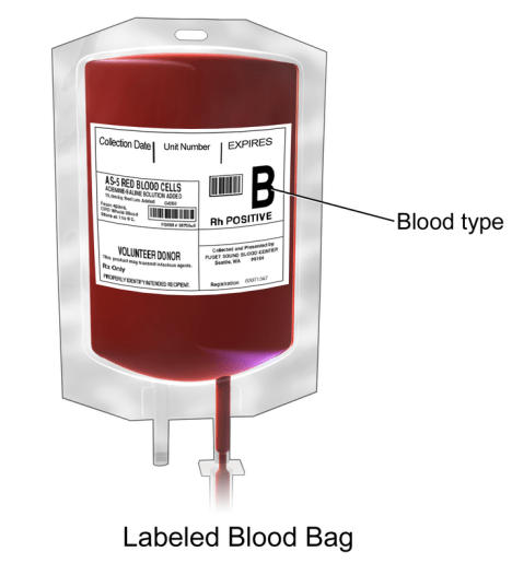 Difference Between Whole Blood and Packed Cell