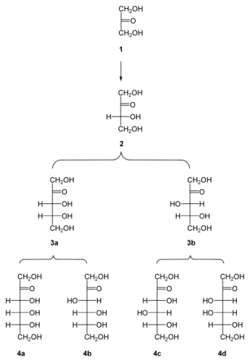 Key Difference - Polyhydroxy Aldehydes vs Polyhydroxy Ketone