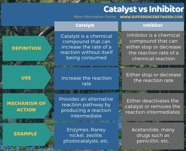 Difference Between Catalyst and Inhibitor in Tabular Form