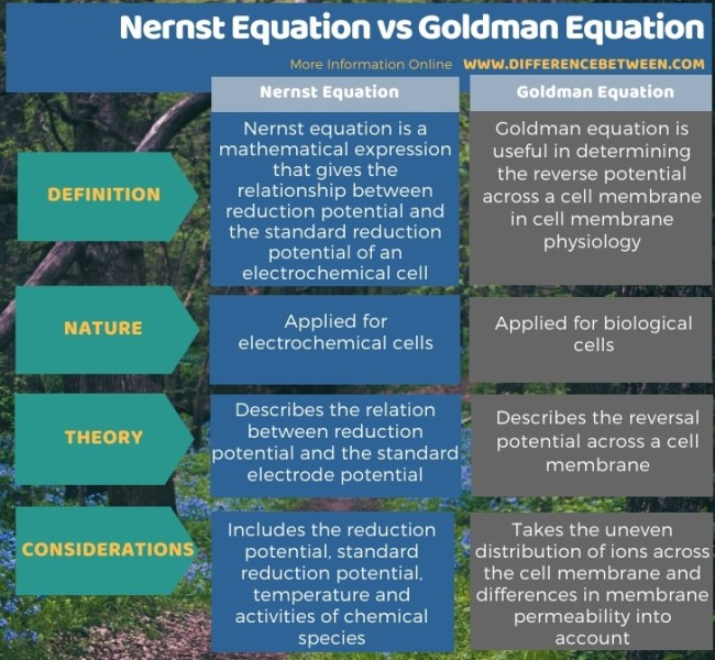 Difference Between Nernst Equation and Goldman Equation in Tabular Form