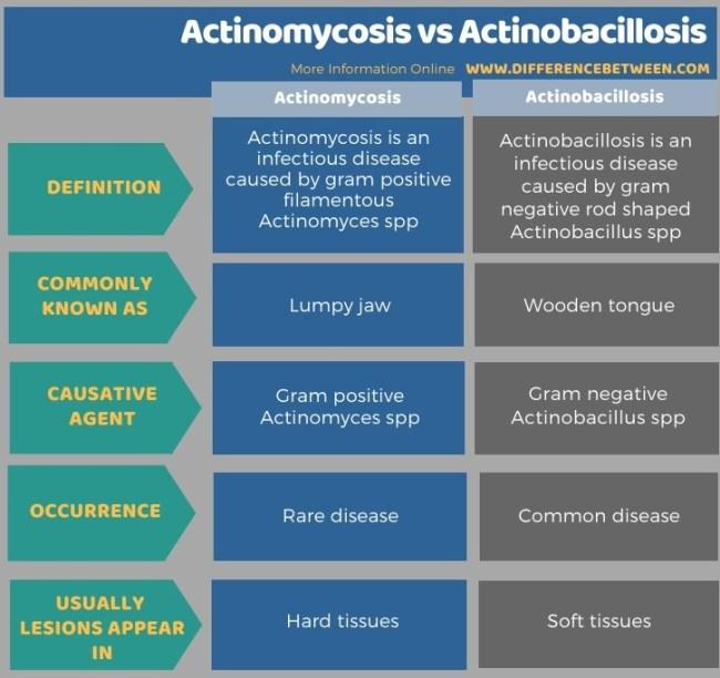 Difference Between Actinomycosis and Actinobacillosis in Tabular Form