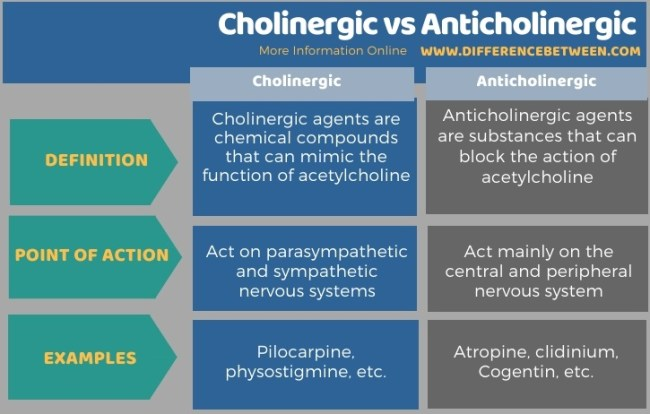 Difference Between Cholinergic and Anticholinergic in Tabular Form