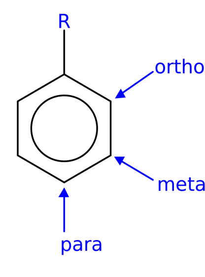 Difference Between Ortho Para and Meta Substitution