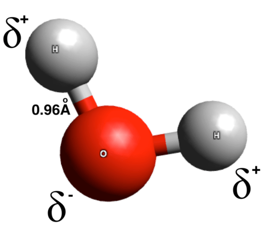 Difference Between Polar and Dipolar Molecules