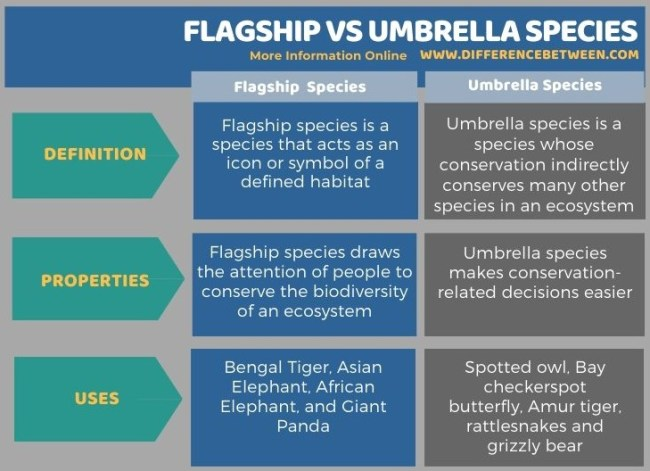 Difference Between Flagship and Umbrella Species in Tabular Form