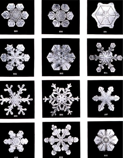 Key Difference - Heat of Fusion vs Crystallization