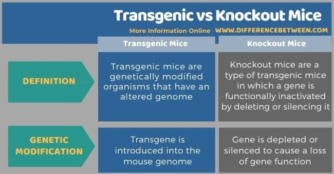 Difference Between Transgenic and Knockout Mice - Tabular Form