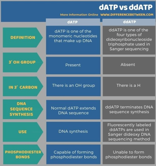Difference Between dATP and ddATP in Tabular Form