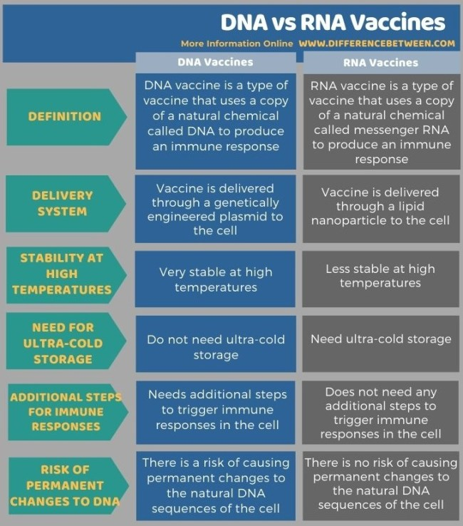Difference Between DNA and RNA Vaccines in Tabular Form